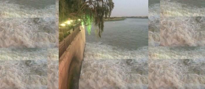 احتفالية المصور العراقي – أغصان تحاكى نهر دجلة
