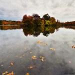Fall at Belmont Lake State Park
