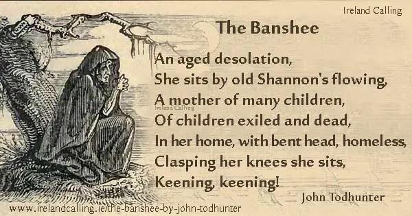 Image result for banshee ireland
