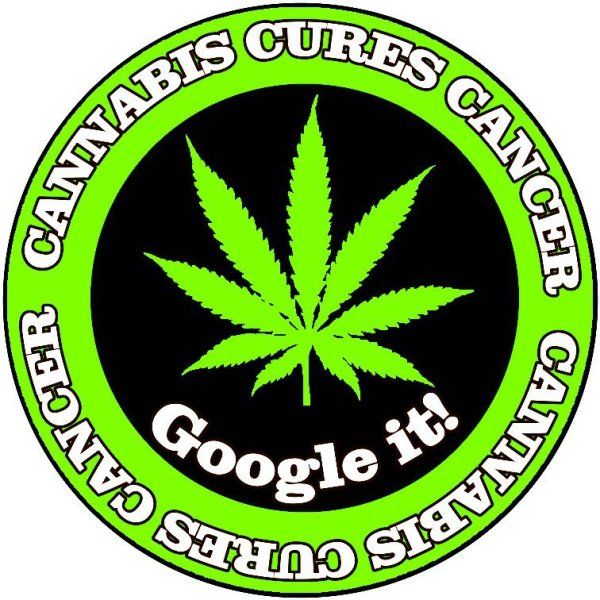 Cannabis Cures Cancer Ireland Cannabis Information