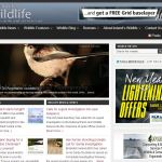 The Ireland's Wildlife Website