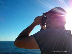 Watching whales from the cliffs at Kalbarri through the Vanguard Endeavor EDII