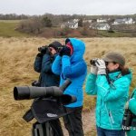 wildlife walk West Cork