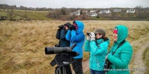 wildlife walk West Cork