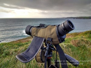 endurance-50-spotting-scope