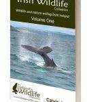 Irish Wildlife Collection Volume 1