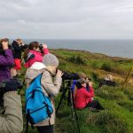 Guided wildlife watching