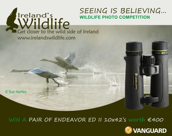 Win a pair of Vanguard Endeavor EDII Binoculars