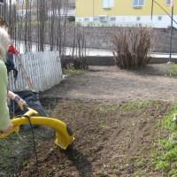 Garden in the making!