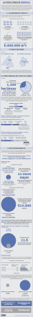 URL: Las otras cifras de Eurovegas. URL: http://singuias.com/index.php/sociedad/44-impacto-medioambiental-de-eurovegas
