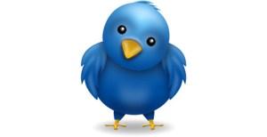 twitter blue bird - twitter-blue-bird
