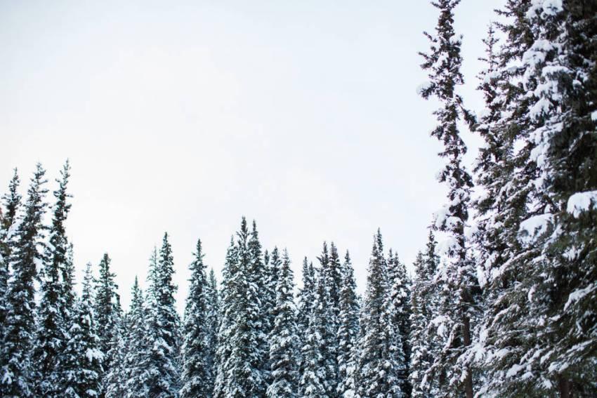 Alaska-27