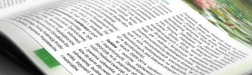 skład i łamanie custom publishing