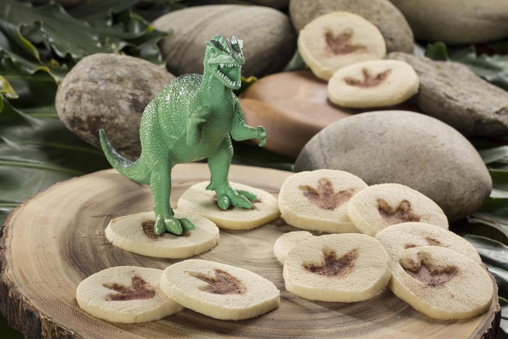Fossil Cookies  MrFoodcom