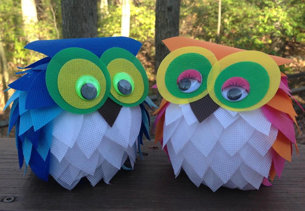 oly fun owl craft