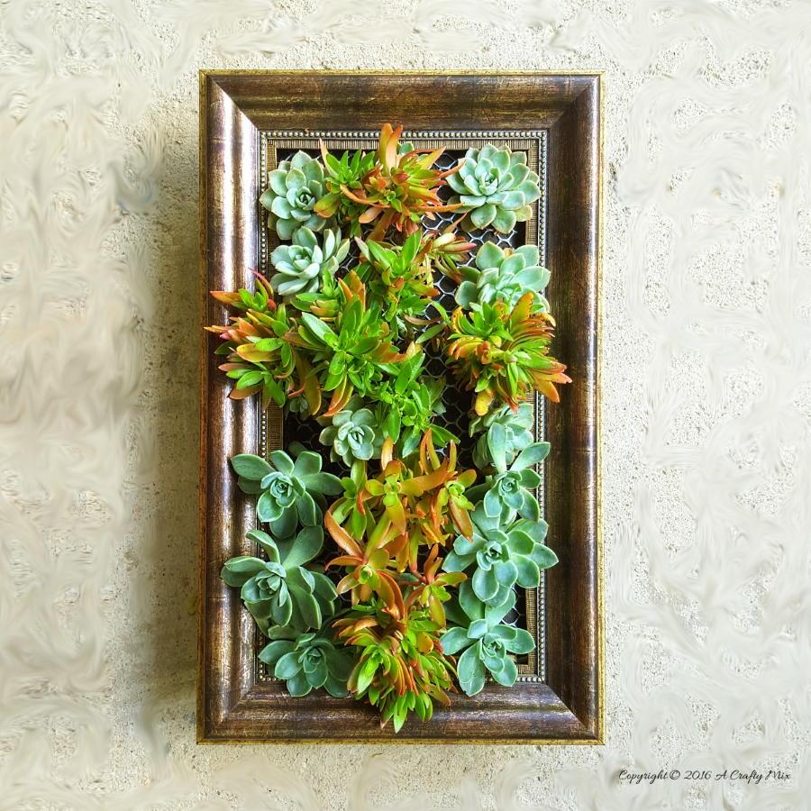 Frame a Vertical Garden  DIYIdeaCentercom