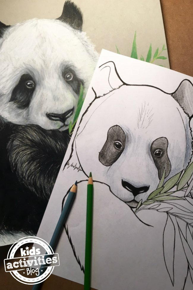 Panda Coloring Page  FaveCraftscom