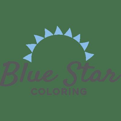 blue star press allfreeholidaycrafts