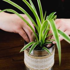 Large Vase For Living Room Modular Storage Coffee Tin Flower Diy | Diyideacenter.com