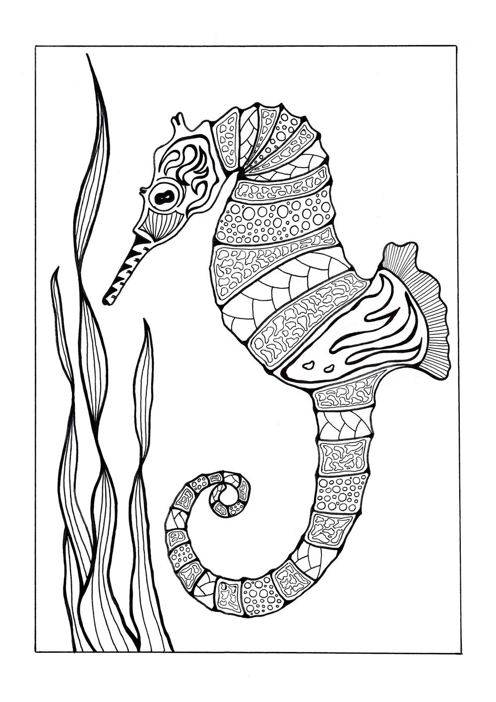 Colorful Seahorse Adult Coloring Page | FaveCrafts.com | free printable coloring pages for adults animals