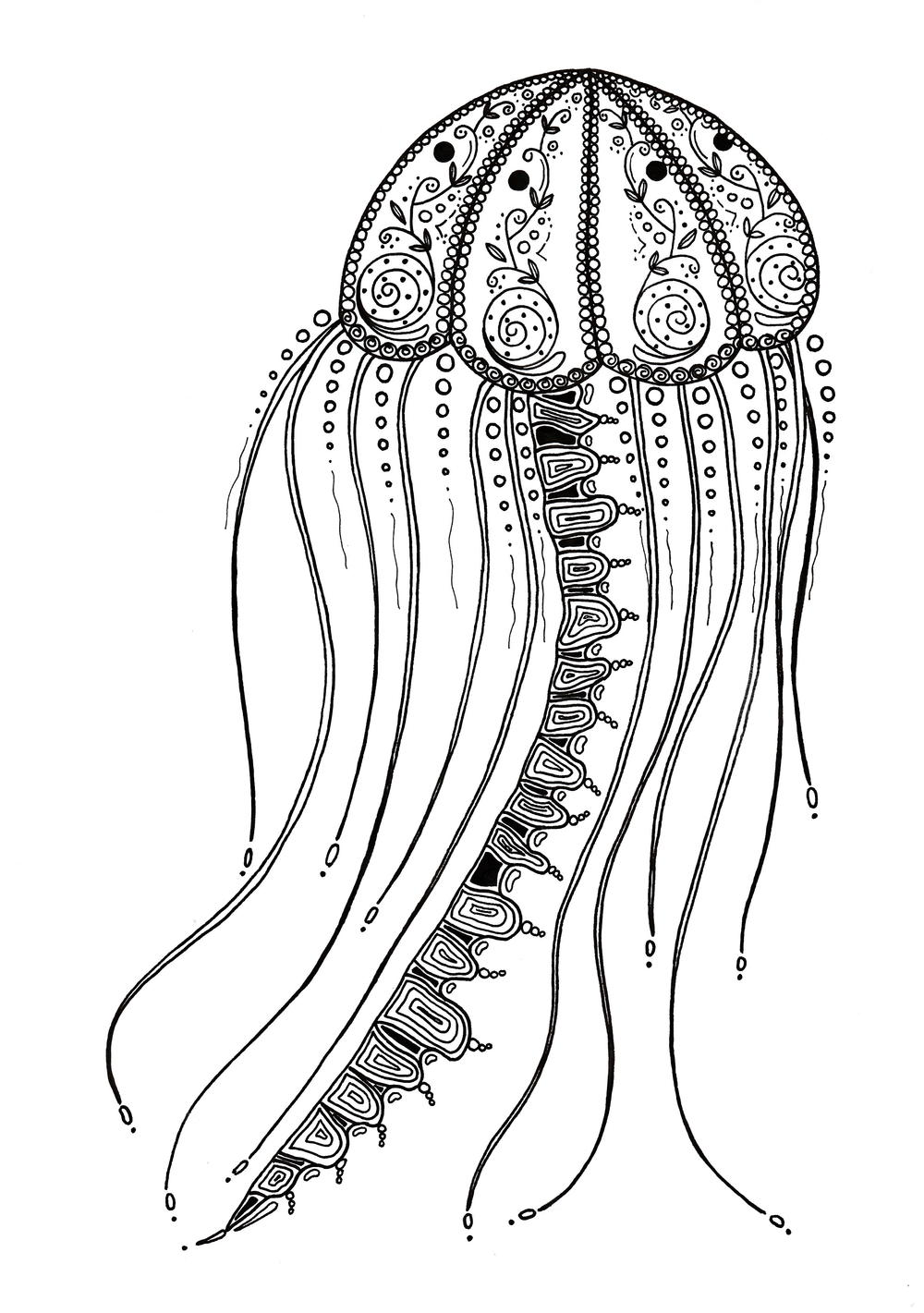 Jelly Fish Coloring Page : jelly, coloring, Delicate, Jellyfish, Adult, Coloring, FaveCrafts.com