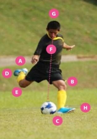 Macam Tendangan Sepak Bola : macam, tendangan, sepak, TEKNIK, MENJARINGKAN, SEPAK, Irfansem