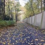 Die Tage davor – alljährliche Gedanken Anfang November