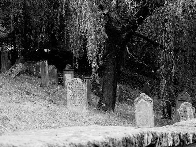 Der Jüdische Friedhof von Floß mit Mauer im Vordergrund. Foto: Juna Grossmann