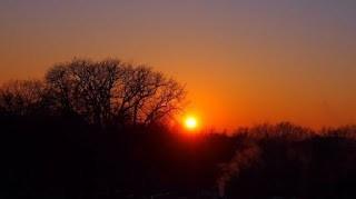 Sonnenuntergang hinter Bäumen im Winter.