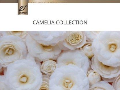 dr-taffi-camelia-collection-chic-eau-de-parfum-profumo-collection-iris-shop