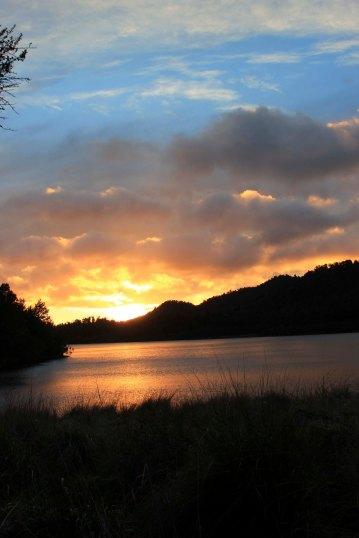 Lake Waikaremoana (184)_1