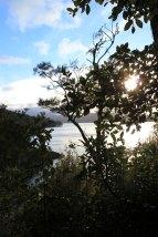Lake Waikaremoana (200)_1