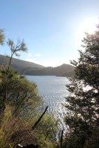 Lake Waikaremoana (220)_1