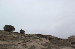 castlepoint (38)
