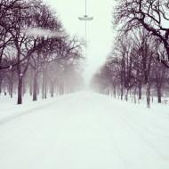 Hauptallee Schnee