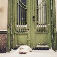 Wien Schnee Türe Jugendstil