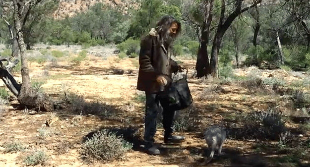 How to catch A Kangaroo like a boss
