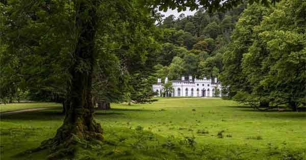 Guinness family to sell their family mansion for €28m