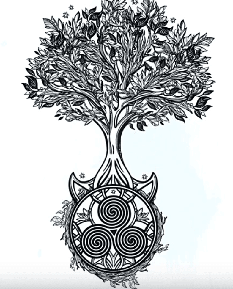Celtic Tree Of Life Drawing : celtic, drawing, Celtic, (Crann, Bethadh), Meanings,, Symbolism, History