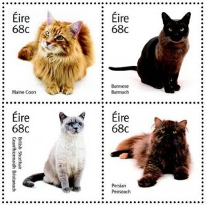 stamps-cat