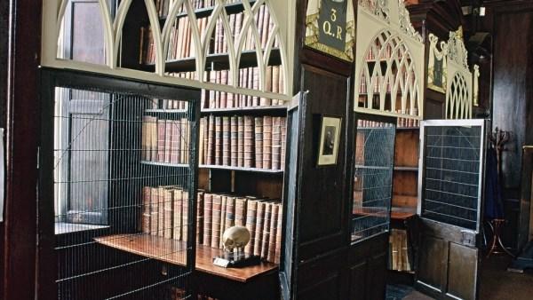Dublin secret : Les cages de la Marsh's Library