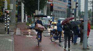 The study tour enjoyed light and very heavy rain
