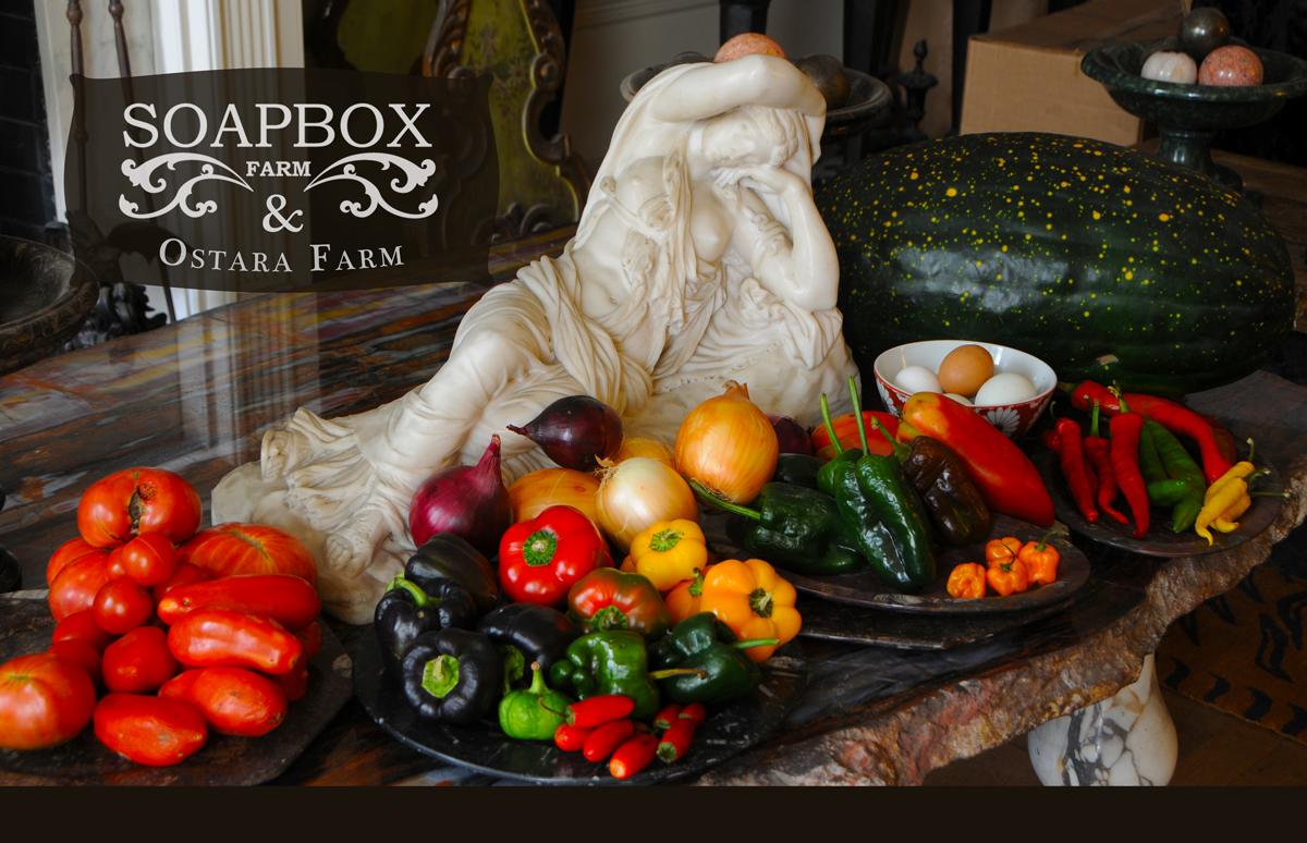 FOOD STYLING Asheville Farm