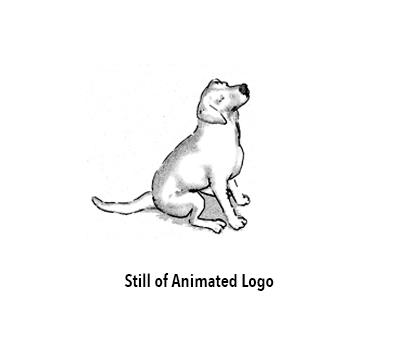 ANIMATION: Short Animation Samples
