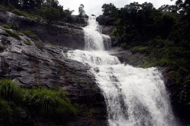 Cheeyapara நீர்வீழ்ச்சிகள் சாலை இருந்து ஒரு பெரிய காட்சி செய்யும் ஏழு படிகளில் கீழே பாய்கிறது