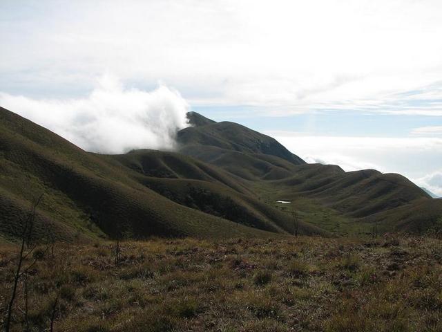 meesapulimala மலையேற்றம்-மூணாறு