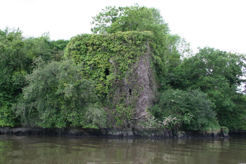 Old Strancally Castle