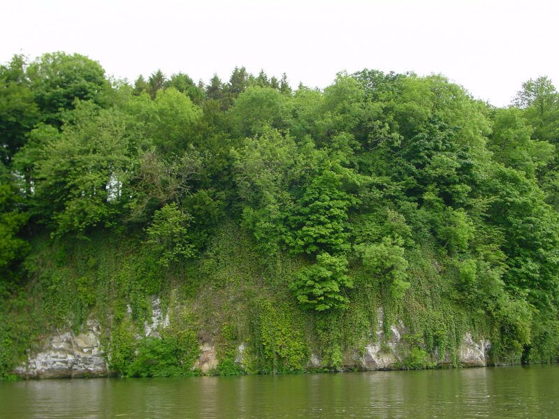 Mini-cliff above Dromana