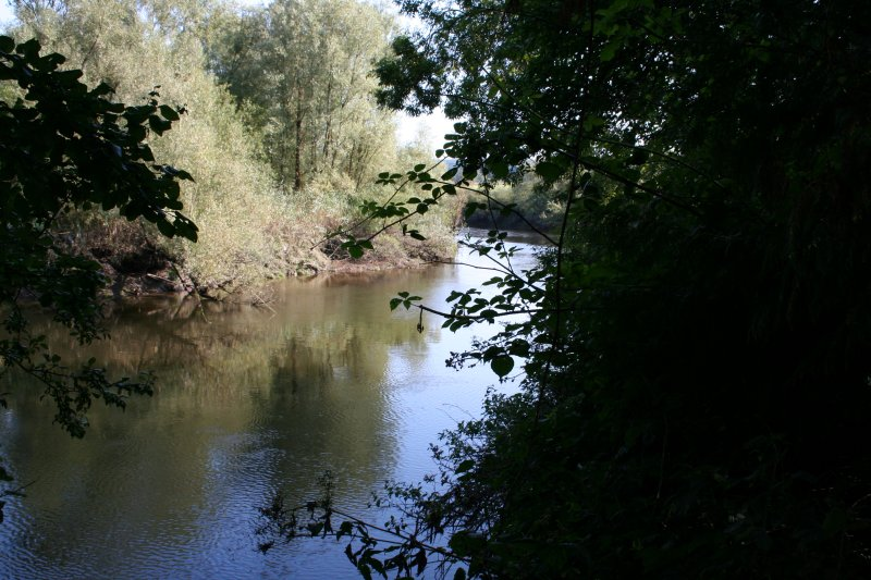 Looking downstream from Janeville Quay