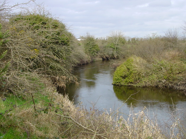 The river below the quay site, heading for Riverstown